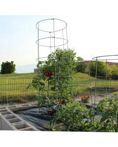 """64"""" Tomato Cage"""